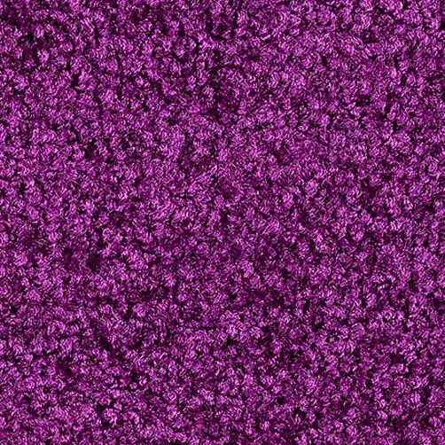 Schmutzfangmatte PT-max-uni violett