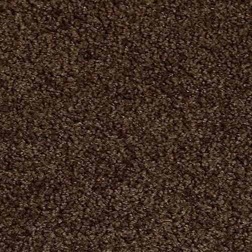 Schmutzfangmatte PT-max-uni braun