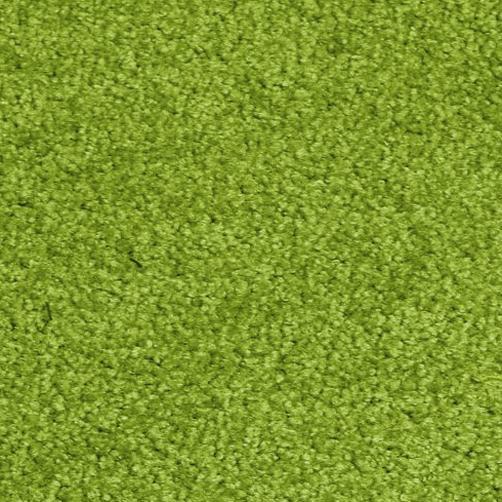 Schmutzfangmatte PT-max-uni grün