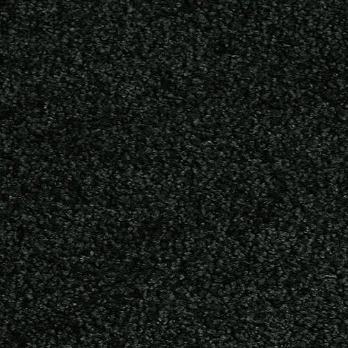 Schmutzfangmatte PT-max-uni schwarz