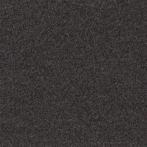 Master Flex Platte mit Schmutfangfläche Swisslon Uni anthrazit, Flor