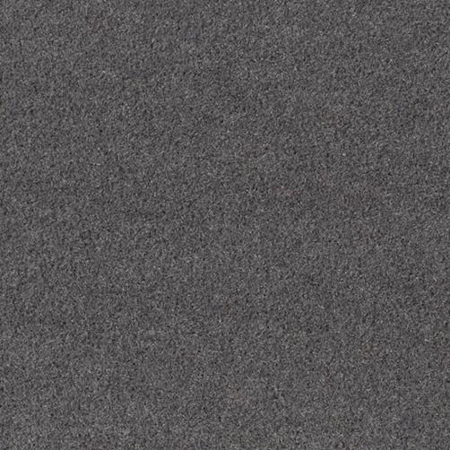 Master Flex Platte mit Schmutfangfläche Swisslon Uni grau, Flor