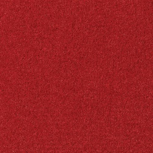 Master Flex Platte mit Schmutfangfläche Swisslon Uni rot, Flor