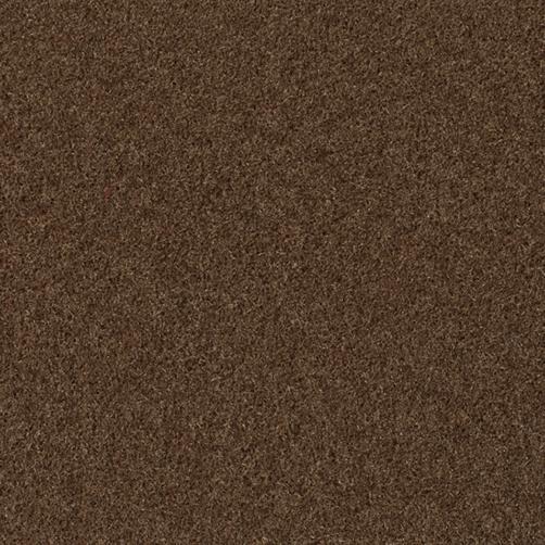 Master Flex Platte mit Schmutfangfläche Swisslon Uni taupe, Flor