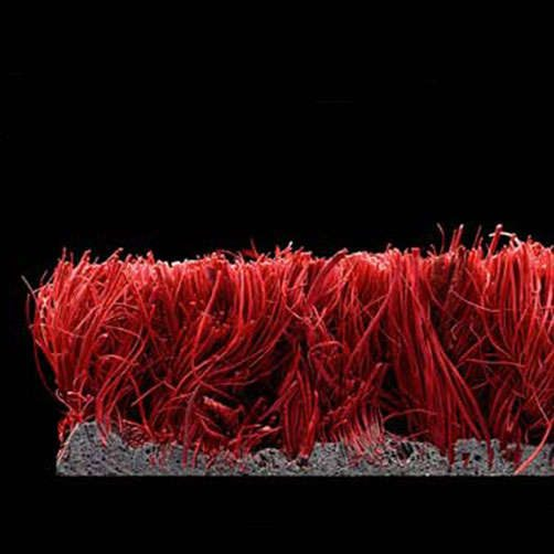 Kokosmatte rot Querschnitt
