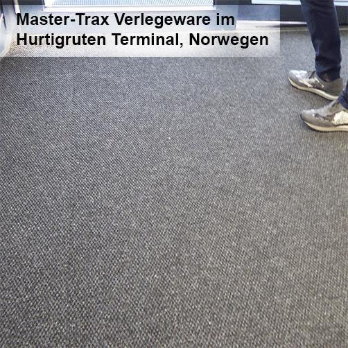 Profi Schmutzfangmatte Master Trax